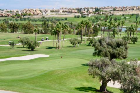 Gallery image 1 for Das La Finca Golf