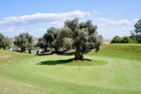 Gallery image 3 for Das La Finca Golf