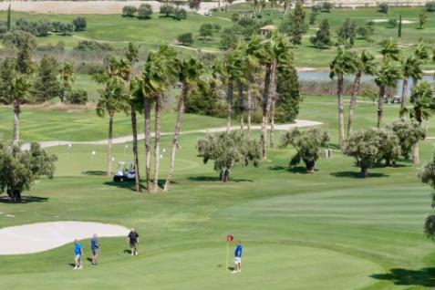 Gallery image 5 for Das La Finca Golf