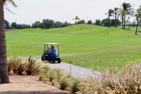 Gallery image 4 for Roda Golf